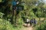 Viale : El municipio aprobó la licitación para adquirir una Retroexcavadora 0km